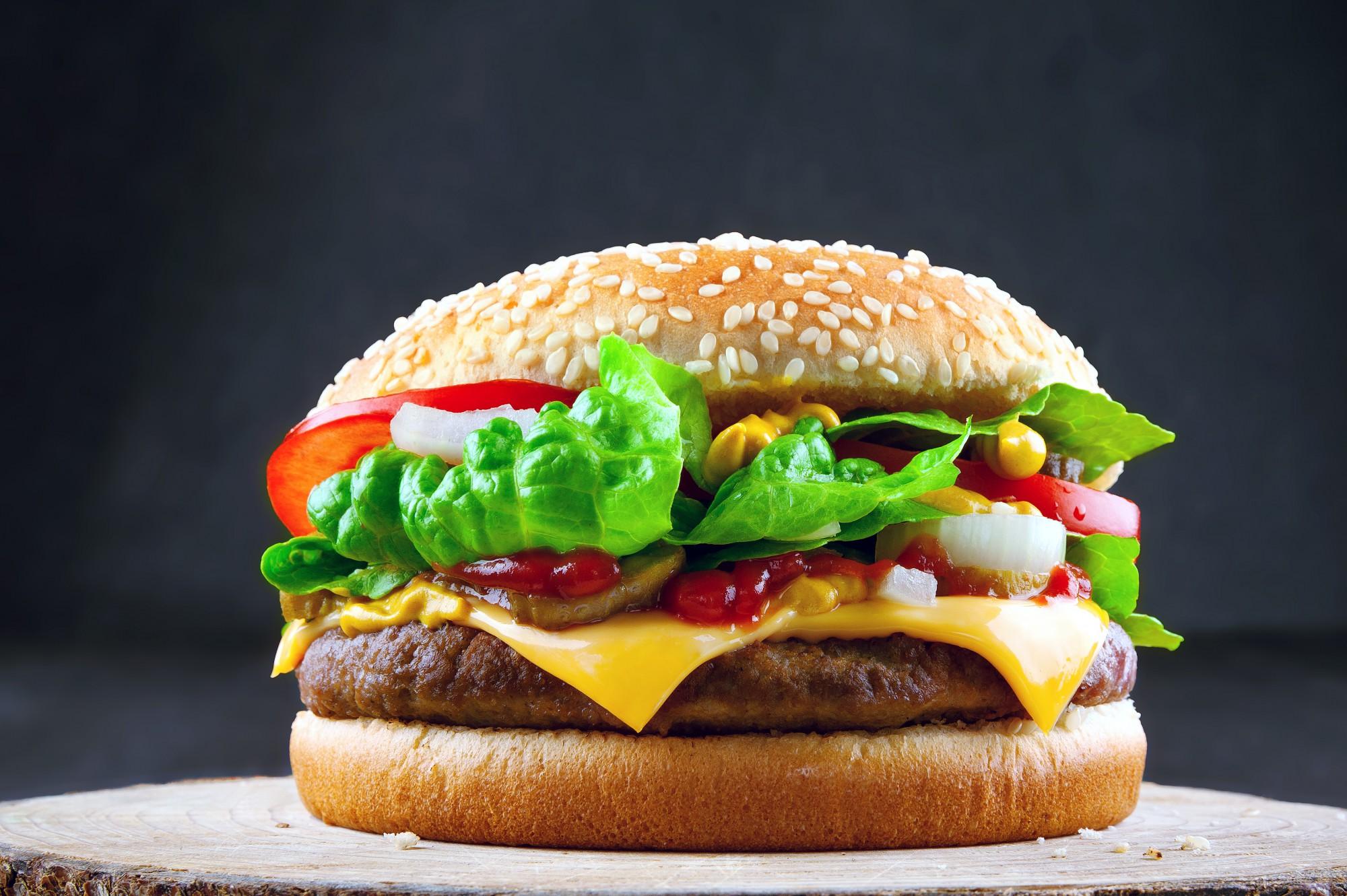 Burger_bearbeitet_v1